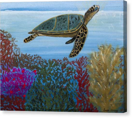 Snorkeling Maui Turtle Canvas Print