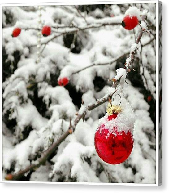 Berries Canvas Print - Snow And Bauble by Alexandra Cook
