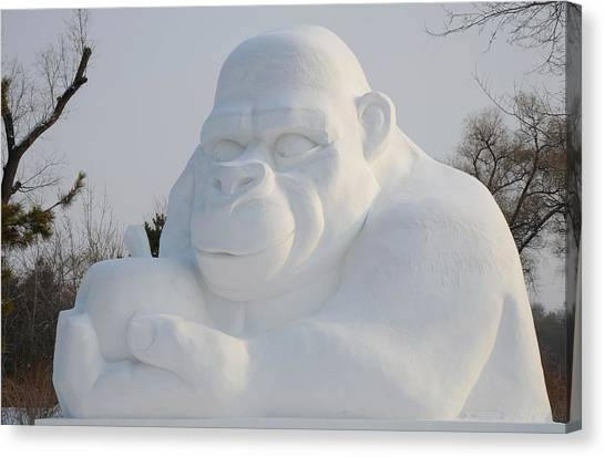Snow Ape Canvas Print by Brett Geyer