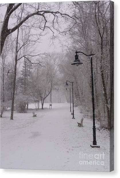 Snow At Bulls Island - 29 Canvas Print