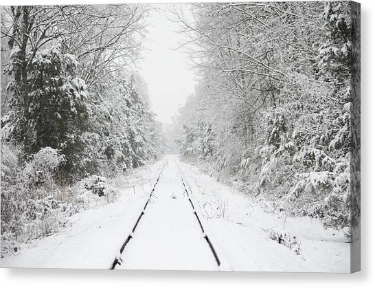 Snow Bound Canvas Print by Nancy Edwards