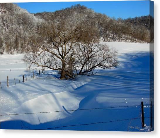Snow Creek Canvas Print