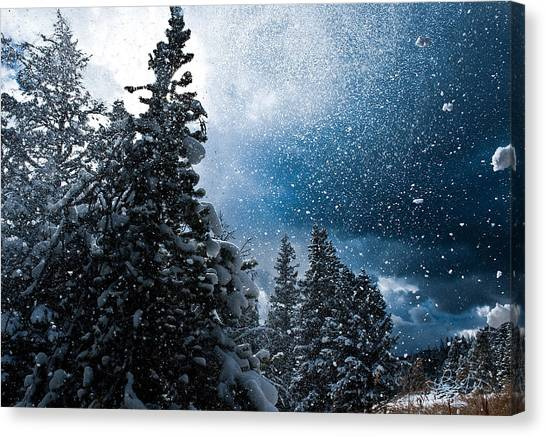 Snow Flurry Canvas Print