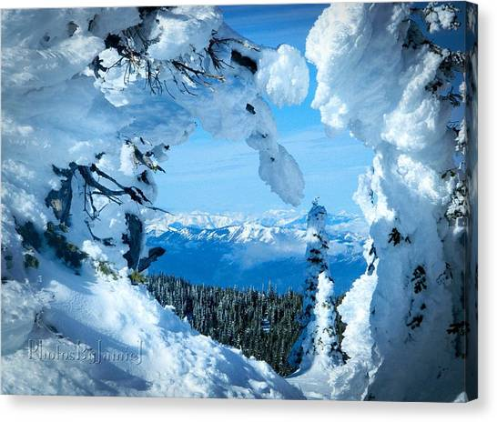 Snow Heart Canvas Print