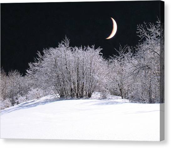 Snow In The Moonlight Canvas Print by Giorgio Darrigo
