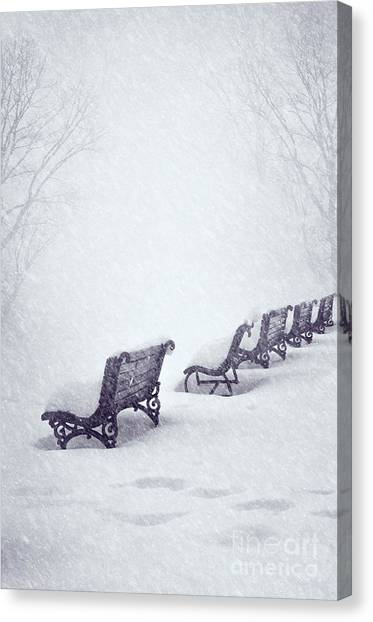Snow In The Park Canvas Print