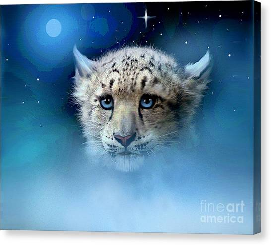Himalayan Cats Canvas Print - Snow Leopard Cub by Robert Foster