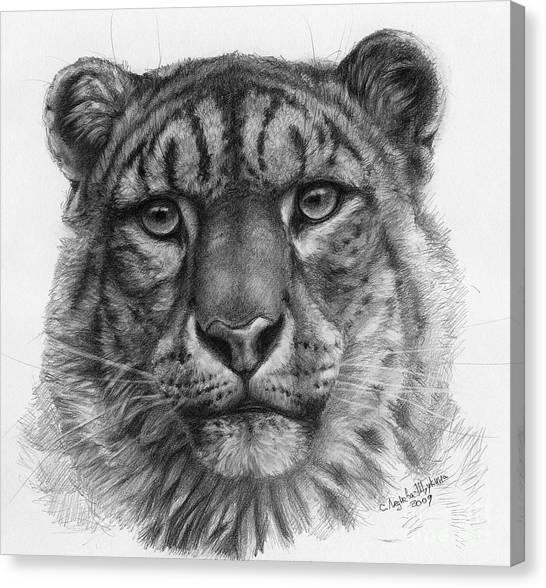 Snow Leopard - Panthera Uncia Portrait Canvas Print by Svetlana Ledneva-Schukina