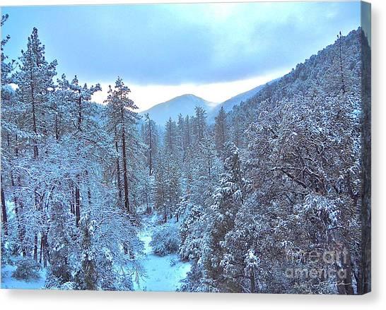 Snow Magic Canvas Print