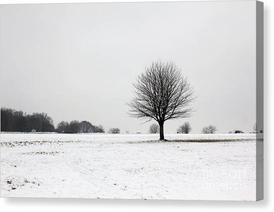 Snow On Epsom Downs Surrey England Uk Canvas Print