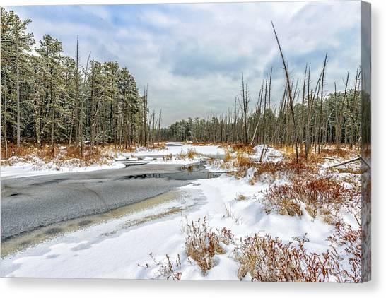 Snow On Roberts Branch Canvas Print