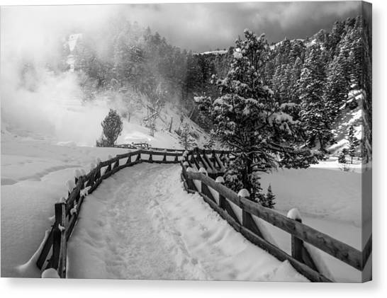 Snow On The Trail Canvas Print