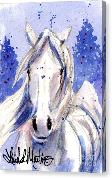 Snow Pony 2 Canvas Print
