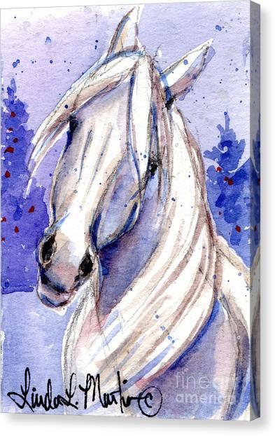 Snow Pony 3 Canvas Print