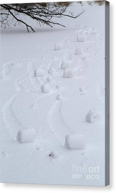 Snow Rollers Canvas Print