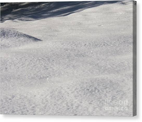 Snow Shadows 2 Canvas Print