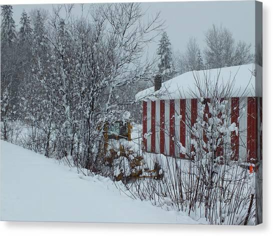 Snow Storm 2 Canvas Print by Gene Cyr