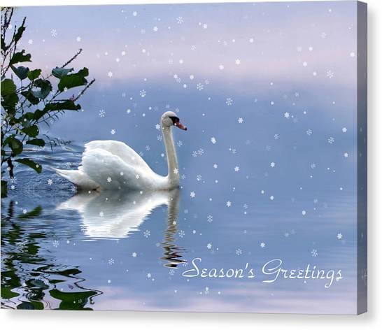 Snow Swan II Canvas Print