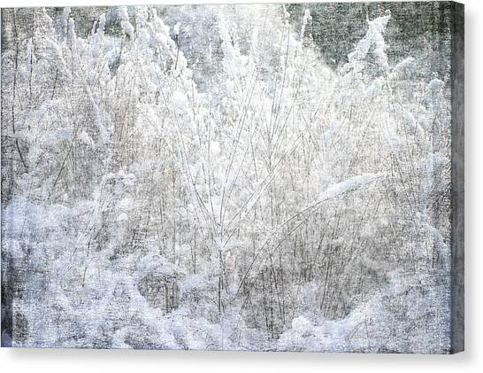 Snow Textures Canvas Print