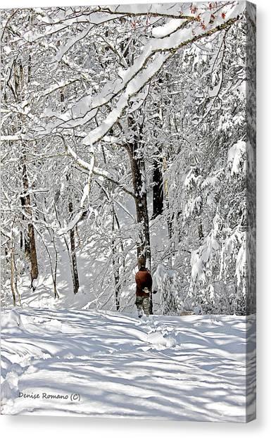 Snow Walking Canvas Print