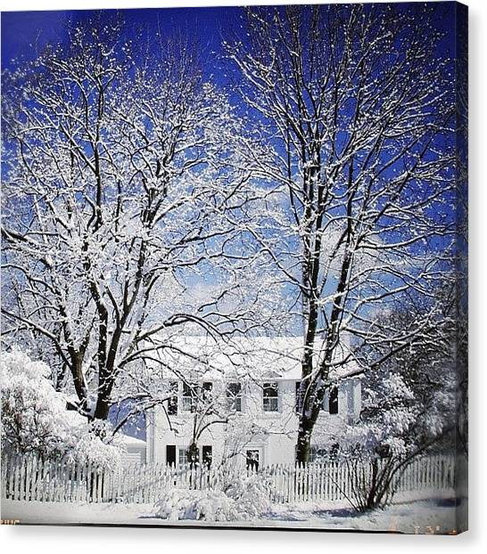 House Canvas Print - #snow #winter #house #home #trees #tree by Jill Battaglia