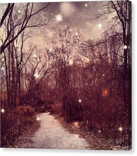 Forest Paths Canvas Print - #snow #winteriscoming #winterishere by Tanya B