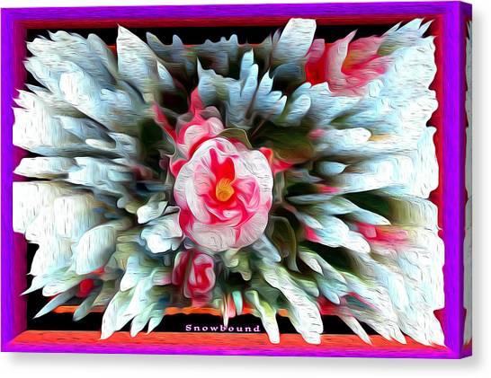 Camellia Canvas Print - Snowbound Camellia by Joe Paradis