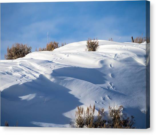 Snowdrifts Canvas Print