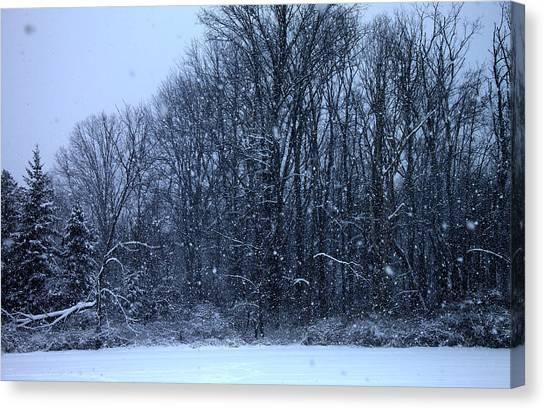 Snowing Canvas Print by Barbara Giordano
