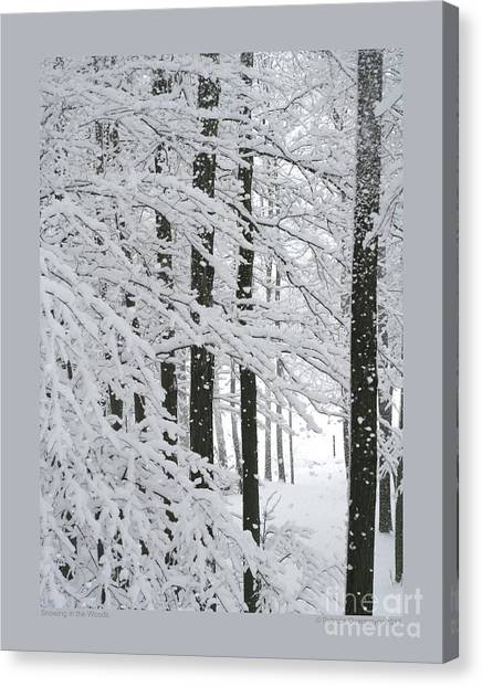 Snowing In The Woods Canvas Print