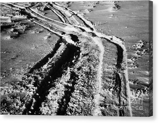snowmobile tracks in snow across frozen field Canada Canvas Print by Joe Fox