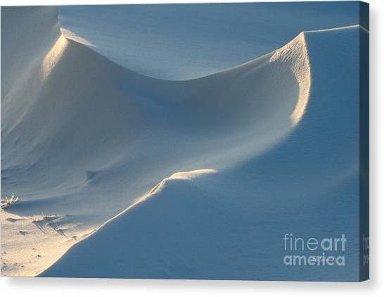 Snowscapes 1 Canvas Print