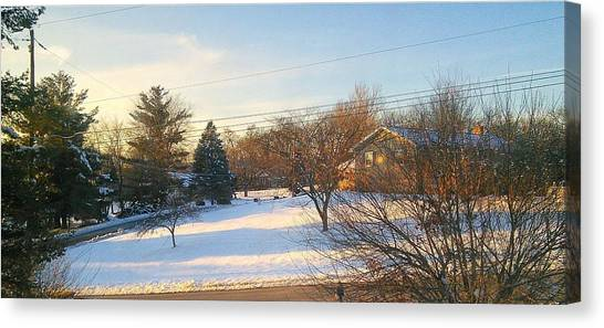 Snowy Afternoon Canvas Print by Lucky Bro's