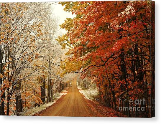 Snowy Autumn Road Canvas Print