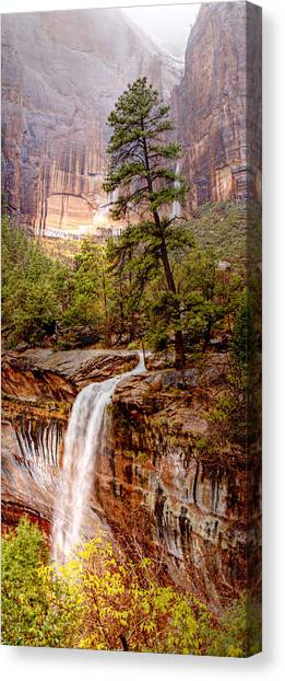 Snowy Day In Zion Canvas Print by Darryl Wilkinson