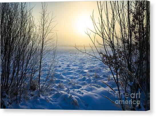 Snowy Dream Canvas Print