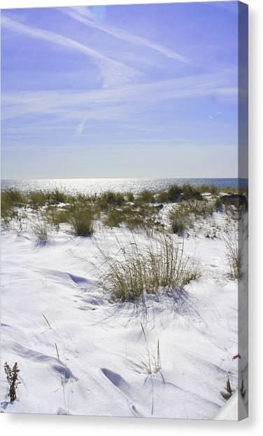 Snowy Dunes Canvas Print