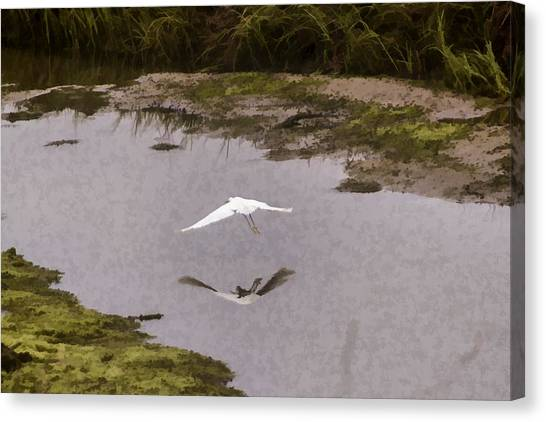 Great Egret Canvas Print by Photographic Art by Russel Ray Photos