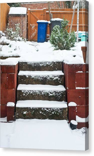 Harsh Conditions Canvas Print - Snowy Garden by Tom Gowanlock