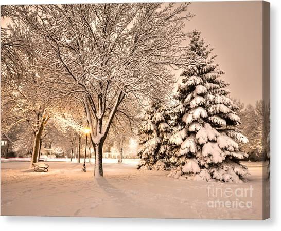 Snowy Night At Windom Park Canvas Print by Kari Yearous