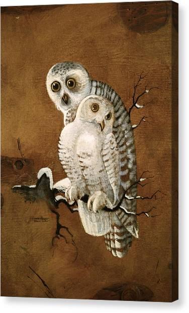 Snowy Owls Canvas Print
