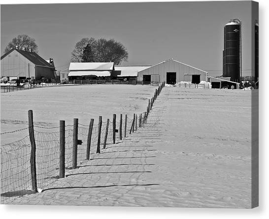 Snowy Pastoral Scene  At The Sheep Farm Canvas Print by Thomas Camp