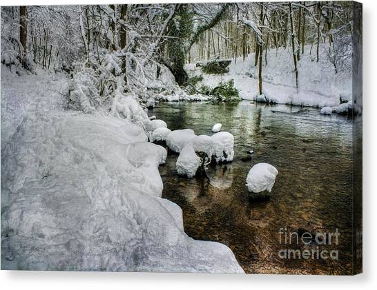 Snowy River Bank Canvas Print