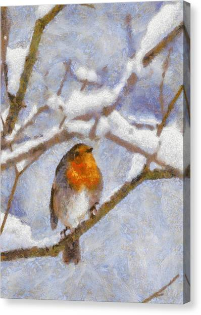 Snowy Robin Canvas Print