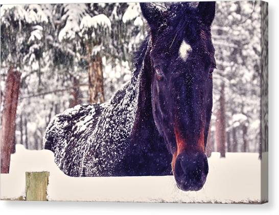 Snowy Spirit Canvas Print