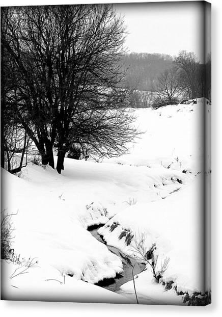 Snowy Stream Canvas Print by Alexandra  Rampolla