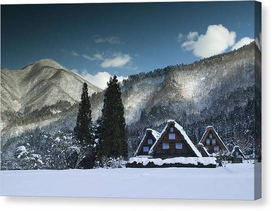 Snowy Trio Canvas Print by Aaron Bedell
