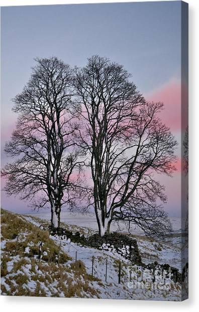 Snowy Winter Treescape Canvas Print