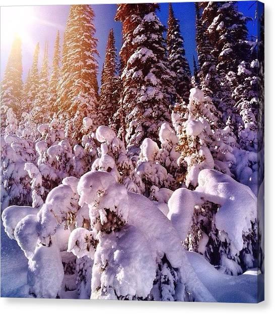 Idaho Canvas Print - Soakin' In The Rays! #morningshredmish by Cody Haskell