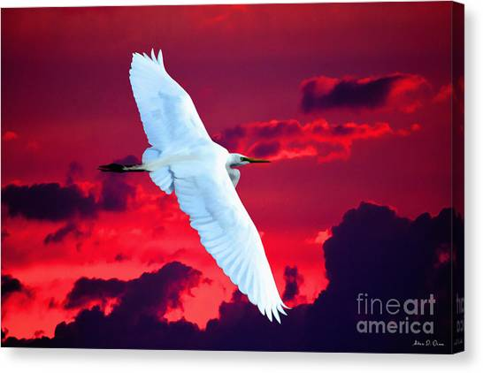 Soaring Heights Canvas Print
